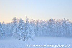E-19-05-Winternebel-(IMG 7557-1k)