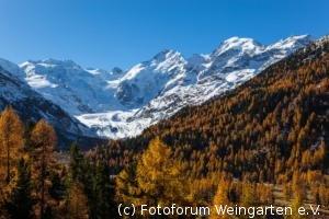 Engadin-Laerchen-2012IMG 5734